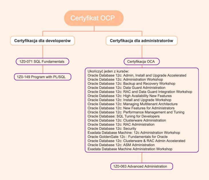Egzaminy do zdania do uzyskania certyfikatu OCP